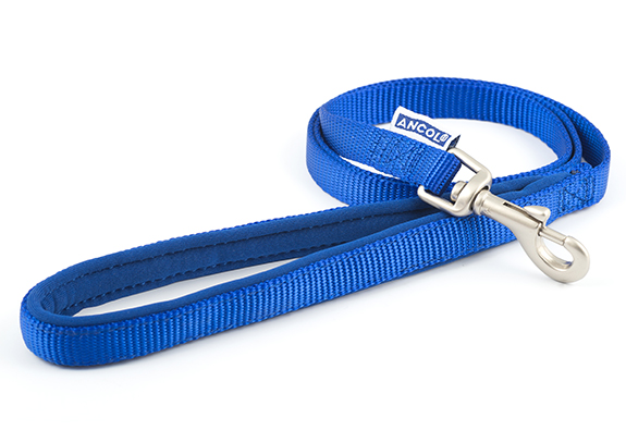 Blue Nylon Leads with Padded Handles