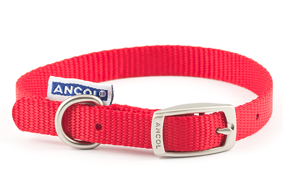 Red Nylon Dog Collar