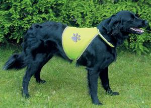 Reflective coat for dogs