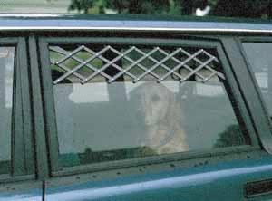 Car Window Vents for Dogs