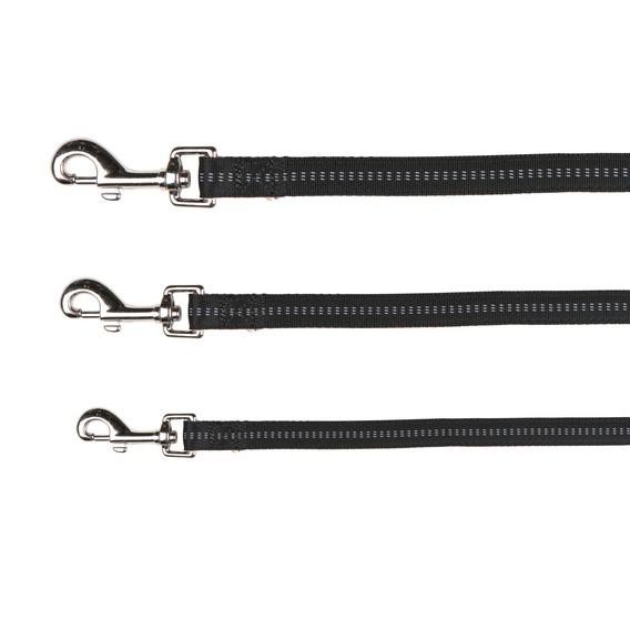 Padded Nylon Leads for Dogs